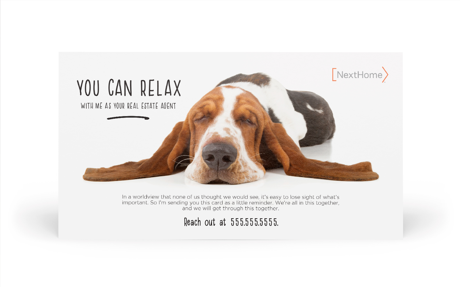 Corefact The Relaxed Hound