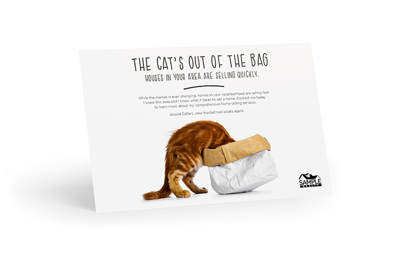 Corefact The Bright Side - The Cat's Out Of The Bag