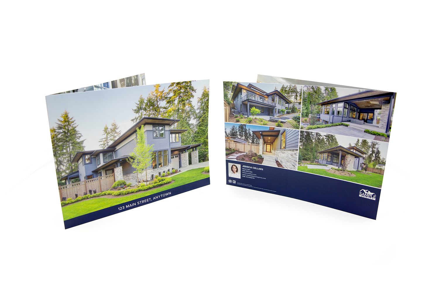 Panoramic Fold Brochure