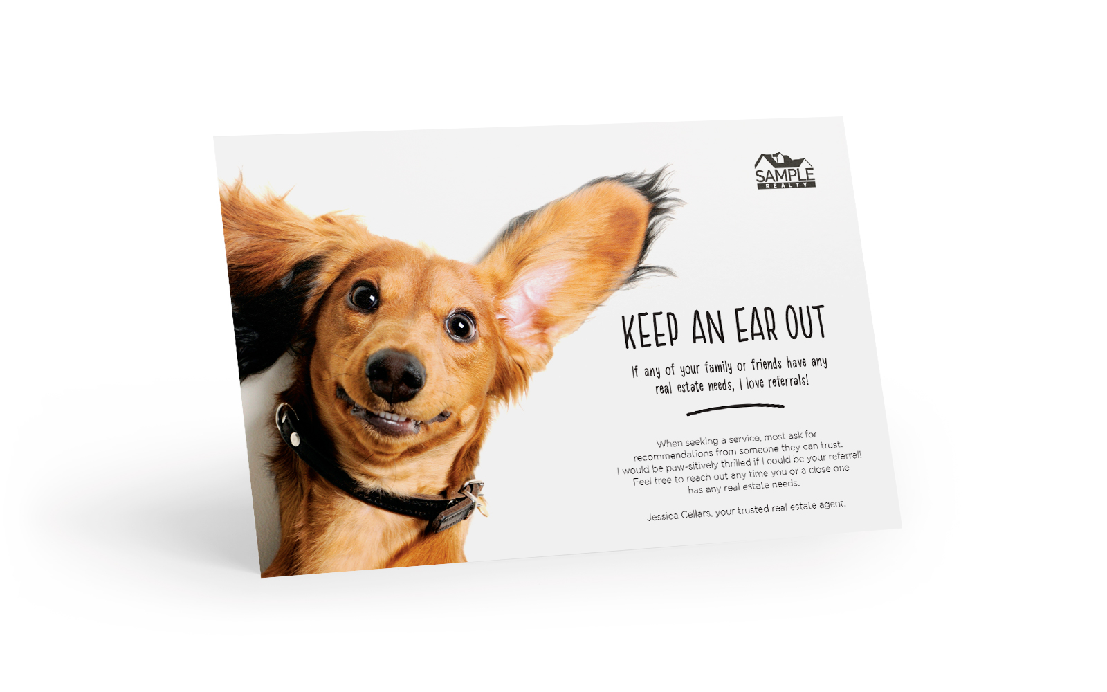 Corefact The Bright Side - The Referral Dachshund